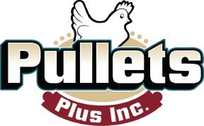 Pullets Plus